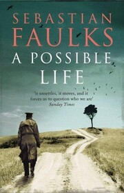 Possible Life, A