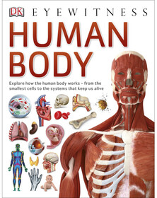 Human Body - Dorling Kindersley