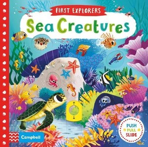 First Explorers: Sea Creatures (9781509832613)