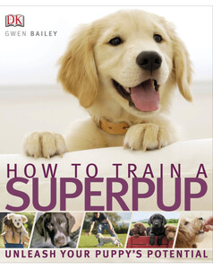 How to Train a Superpup