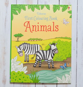 Animals - Usborne