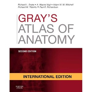 Gray's Atlas of Anatomy, International Edition, 2nd Edition