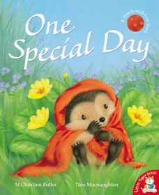 One Special Day - мягкая обложка