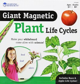 Magnetic Plant Life Cycles